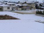 雪ですよ!(3)